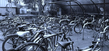 NUI Galway's Cycle to Campus Day To Mark Galway Bike Week Festival -image